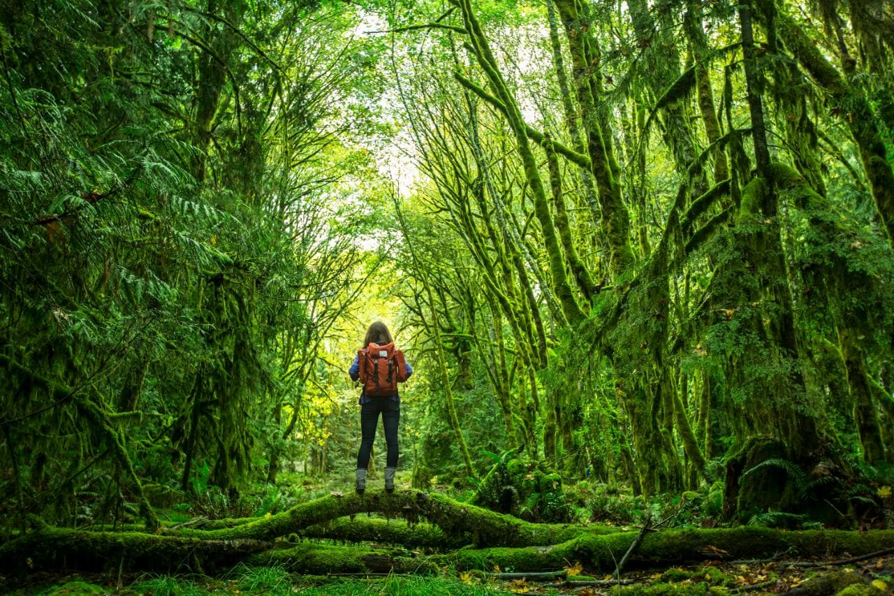 A woman solo traveler in the outdoors